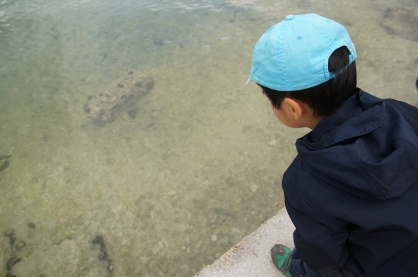 Lenny watching fish in Greece's Ionian Sea